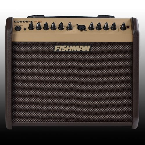 Used Fishman Loudbox Mini