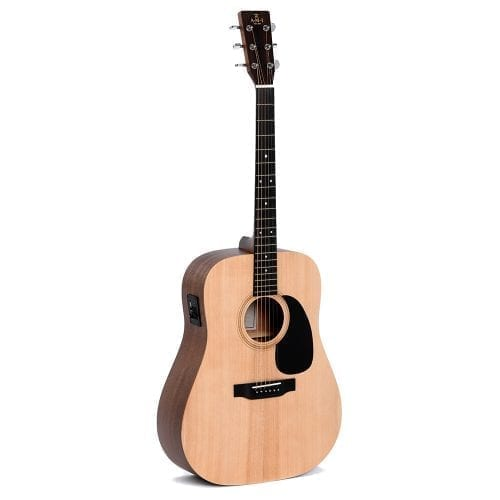 AMI DME Acoustic Guitar